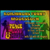 Funky Woodstock (26-28/08/2016)